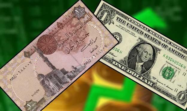 الدولار يواصل قفزاته في التعاملات الرسمية بالبنوك مسجلا 18.65 جنيه للشراء