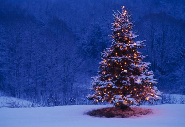 برودة شديدة و صقيع على معظم المحافظات في عشية الكريسماس